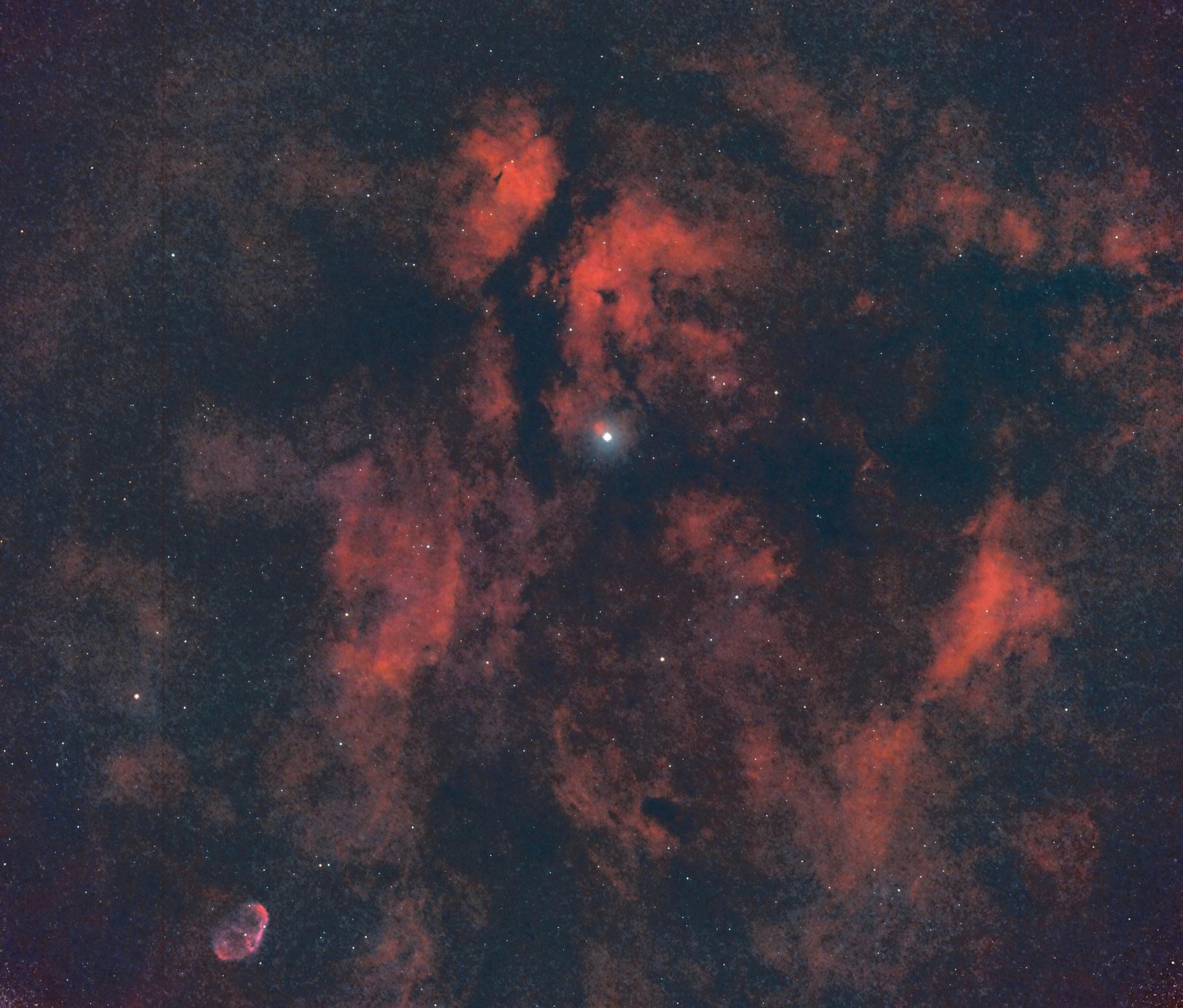 IC 1318 - Région autour de l'étoile Sadr  en HOS,                                Roger Bertuli