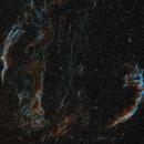 The Veil Nebula Complex,                                Alex Roberts