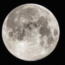 My full Moon,                                eldoctorbacterio