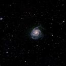 Pinwheel Galaxy,                                Muhammad Ali