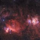 Orion - A dusty Wide-Field,                                Gernot_Obertaxer