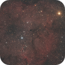 The elephant trunk nebula - IC1396,                    Simon