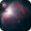 M 42 - The Orion Nebula,                                Frank Rossetti