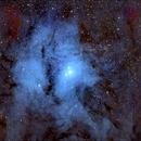 IC 4604, the Rho Ophiuci Nebula,                                morrienz