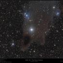 VdB 150 - The Shark Nebula,                                  Frank Schmitz