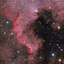 NGC 7000/The Great Wall,                                Felix D.