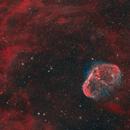 Crescent Nebula in Cygnus,                                Steve Milne