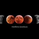 Moon eclipse, 21 January,                                Gianluca Galloni