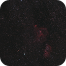 21P Giacobini Zinner Comet,                                Stephan Linhart