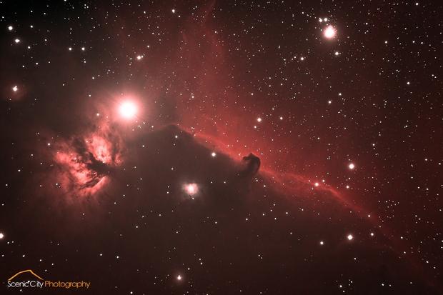 The Horsehead Nebula,                                Matt Harbison