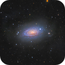 M63 - The Sunflower Galaxy,                                Jason Guenzel