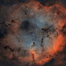 IC 1396 - HOO,                                D@vide