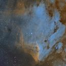 IC 5070 (Pelican Nebula),                                Brian Sweeney