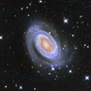 NGC 4725,                                Salvatore Iovene