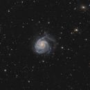 M101 in Ursa Major - HaLRGB,                    Steve Milne