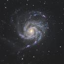 M101,                                Isao Matsuoka