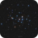 M44 - The Beehive Cluster,                                Emil Andronic