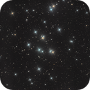 M44 -  Praesepe,                                Siegfried
