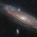 Andromeda Galaxy,                                Roger Nichol
