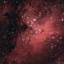 M16 Eagle Nebula,                                Tyler Jackson Welch