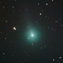 Comet ATLAS Y4,                                Shannon Calvert