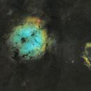 Les nébuleuses de la trompe d'éléphant  IC1396 et du calamar OU4,                                AstromaC