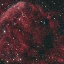 Jelly Fish Nebula IC 443,                                Dean Salman