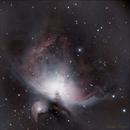 M42,                                NuTek