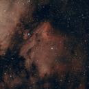 IC5070_Pelican,                                AstroLion