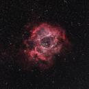 Rosette Nebula,                                Kyle Floros