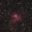 NGC 1491,                                Matteo Quadri