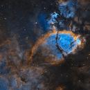 Fish Head Nebula,                                  Rodd Dryfoos