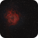 Rosette Nebula NGC 2244,                                kribba