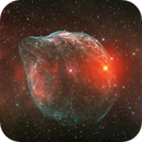 Sharpless 308 (with RGB stars),                                Ruben Barbosa