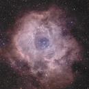 NGC2237 - Rosette nebula,                                bingocrepuscule