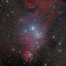 Chistmas Cluster (FoxFur) - ChileScope,                                  Franz Gruber