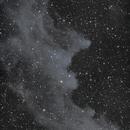 Witches Head Nebula - LRGB - Esprit 150 - QHY600,                                Eric Walden