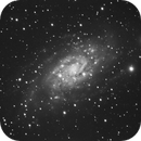 NGC 2403, still uncollimated,                                Salvatore Iovene