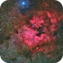 North America Nebula (NGC 7000) @ DSW,                                Miles Zhou