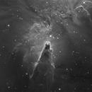 NGC2264 - The Cone nebula in mono,                                Sara Wager