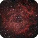 Rosette Nebula Mosaic NGC2237,                                Hughes Thompson