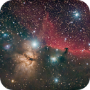 Flame and Horsehead nebulae,                                Steffen Boelaars