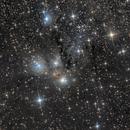 NGC 2170,                                Oliverglobetrotter