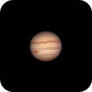 Jupiter and its moons -- EdgeHD First Light,                                Rathi Banerjee