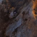 IC5070 (Pelican Nebula),                                Don Reed