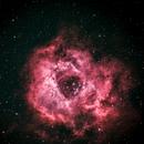 Rosette Nebula,                                J. S. Volpe, Ph.D.