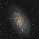 M33 the Triangulum galaxy,                                Ivan Bosnar