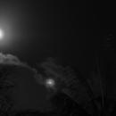 Conjonction Lune-Vénus(6°) avec les Pléiades,                                Ariel