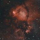 The Fish Nebula,                                Don Walters