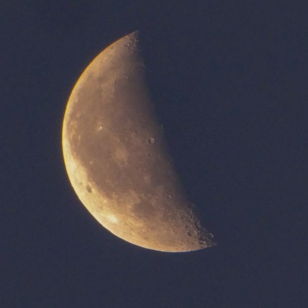 Abnehmender Mond in der Frühe,                                Silkanni Forrer